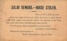 1892 Postcard $10 Reward for Stolen Horse in Buffalo, New York~130030
