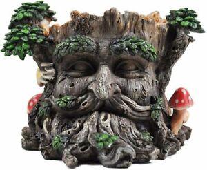 Greenman Face Plant Pot Holder Tree Ent Face Decorative Woodland Planter (39689)