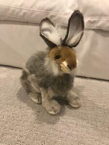 Hansa Brown Hare