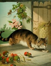 Hector Giacomelli Four Footed Favourites Our Tom Cat Pastel Painting Reprint A4