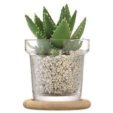 LSA International Plant Pot Set & Oak Base H16.5cm Clear