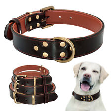 Leather Dog Collars with for Medium Large Dogs Heavty Duty Buckle Black Labrador