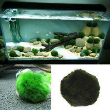 Artificial Moss Ball Fish Tank Aquarium Decor Ornament 2.5-4.5cm Natural Plants