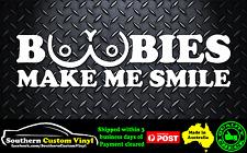 Boobies make me smile Car Window Sticker Decal