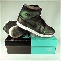 Nike Air Jordan 1 SB Craig Stecyk | Black/Anodised Green | UK8/US9 | Rare