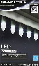 Gemmy LED LightShow Brilliant White C9 Lights Set of 12 Lighted length 11 ft NIB