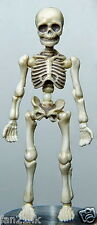Re-ment Miniatures Re-ment Pose Skeleton Human Set new arrival Halloween RARE
