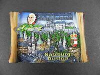 Magnet Salzburg AUT Ansicht,Polyresin Souvenir Österreich Austria,NEU..