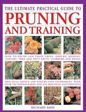 The Ultimate Practical Guide to Pruning & Training: How To Prune And Train Trees
