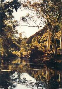 Postcard Australia Flinders Ranges Arkaroola Mt Painter Sanctuary