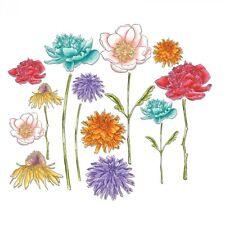 Sizzix Thinlits Dies By Tim Holtz - Flower Garden & Mini Bouquet