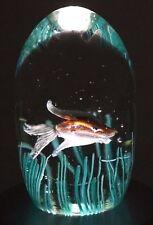 LARGE Fascinating MURANO Swimming FISH Cenedese AQUARIUM Art Glass PAPERWEIGHT