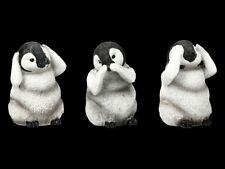 Türschild Dekoschild « Penguin » Vogel Pinguin Königspinguin