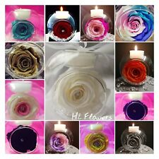 One Preserved Rose in glass bauble with Yankee candle!