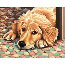 PAINTWORKS Paint by Number Kit DOG TIRED 14 x 11 inches Dimensions
