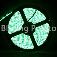 LumenWave 5M 5050 IP65 Waterproof Flexible 300 LED Strip Lights -White PCB-Green