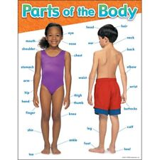 Parts of the Body Learning Chart Trend Enterprises Inc. T-38048