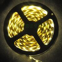 12V 5M 5050 SMD Flexible LED Strip Warm White 300 Leds Non-waterproof Lights