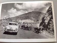 PHOTO MEXIQUE : SCÈNE SURPRENANTE DANS LES MONTAGNES VERS 1960 - Format 18x13cm