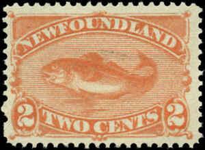 Newfoundland Scott #48 Mint No Gum