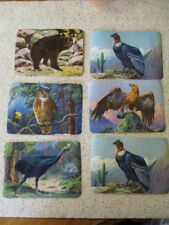 "6 ANTIQUE 1900's GERMAN TRADE CARDS, ""ANIMALS""  FULL COLOR CHROMO-LITHOGRAPHS ##"