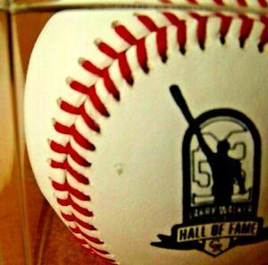 2021 Larry Walker Hall of Fame 2020 ball baseball Colorado Rockies DAMAGE