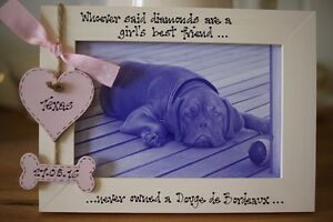 Personalised Photo Frame by Filly Folly! Dog, Pet Frame! 6x4''