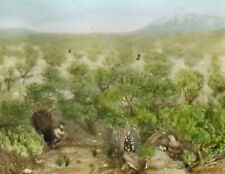 TURKEYS IN THE WILD SKETCH ON HAND TINTED GLASS LANTERN SLIDE//TURKEY DANCE