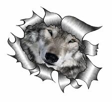 LARGE Ripped Torn Metal Look Design With Wolf Wolves Eyes Face vinyl car sticker