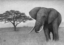Elephant Original Drawing - African Wildlife Nature Animals Pencil Artwork