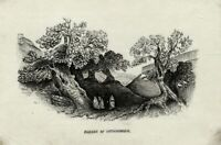 Antique 19th-century Watercolour Painting on Pith – Garden of Gethsemane