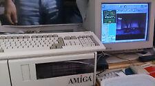 Amiga 4000 A4000 in 4000T - Gehäuse, Warpengine Picasso IV Paloma funktionsfähig