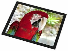 Green Winged Red Macaw Parrot Black Rim Glass Placemat Animal Table G, AB-PA11GP