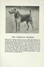 Airedale Terrier - 1931 Vintage Dog Print - Breed Description - Matted