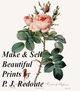 Restored ANTIQUE P. J. REDOUTE ILLUSTRATIONS High Resolution Printmaking Images