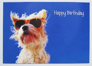 Happy Birthday Cool Dog Greetings Card For Her/Him/Friend/Kids by Cards For You
