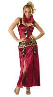 Incharacter Women's Sexy Deluxe Desert Harem Belly Dancer Adult Costume Large