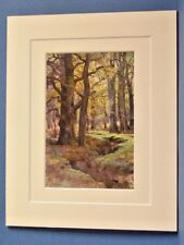 MALLARD WOOD NEW FOREST VINTAGE DOUBLE MOUNTED HASLEHUST PRINT 1920 10X8 OVERALL