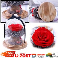 Preserved Forever Flower Immortal Fresh Rose in Glass Best Romantic Gift for Her