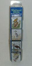 Wetland Birds Rubber stamps Pelican Heron Ibis Stork In Package Crayon Factory