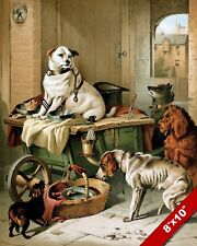 DOGS IN A MESSY WORK SHOP CANINE ART PAINTING PRINT ON REAL CANVAS