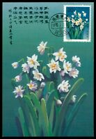 CHINA MK FLORA ORCHIDEEN ORCHIDS MAXIMUMKARTE CARTE MAXIMUM CARD MC CM h0708