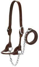 Med Brn 4H Show Halter,No 90-0671, Weaver Leather Llc