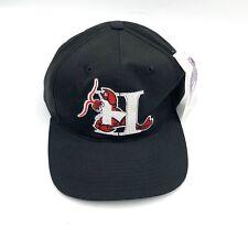 Vintage 90s Hickory Crawdads Minor League Baseball Snapback Hat New NWT