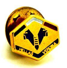 Pin Spilla Hellas Verona Calcio Campione D'Italia