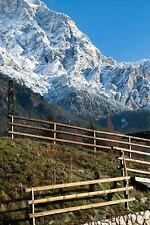 View of a Stone Wall and Fence and Mountains Borca Di Cadore Italy Journal :...