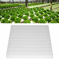 100pc Hydroponic Sponge Planting Gardening Tool Seedling Sponges for Greenhouse