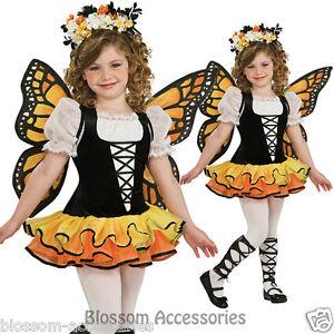CK355 Monarch Butterfly Fairy Animal Garden Girls Fancy Dress Book Week Costume