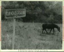 1989 Press Photo Burma Shave Sign in Spafford New York on Becker Road