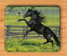 HORSE BLACK STALLION RUNNING IN MEADOW MOUSE PAD -tdf5Z